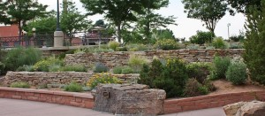 Johnston Garden